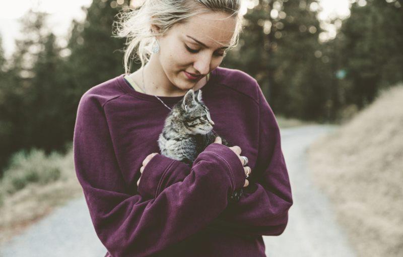 Abrams Royal Animal clinic- Services